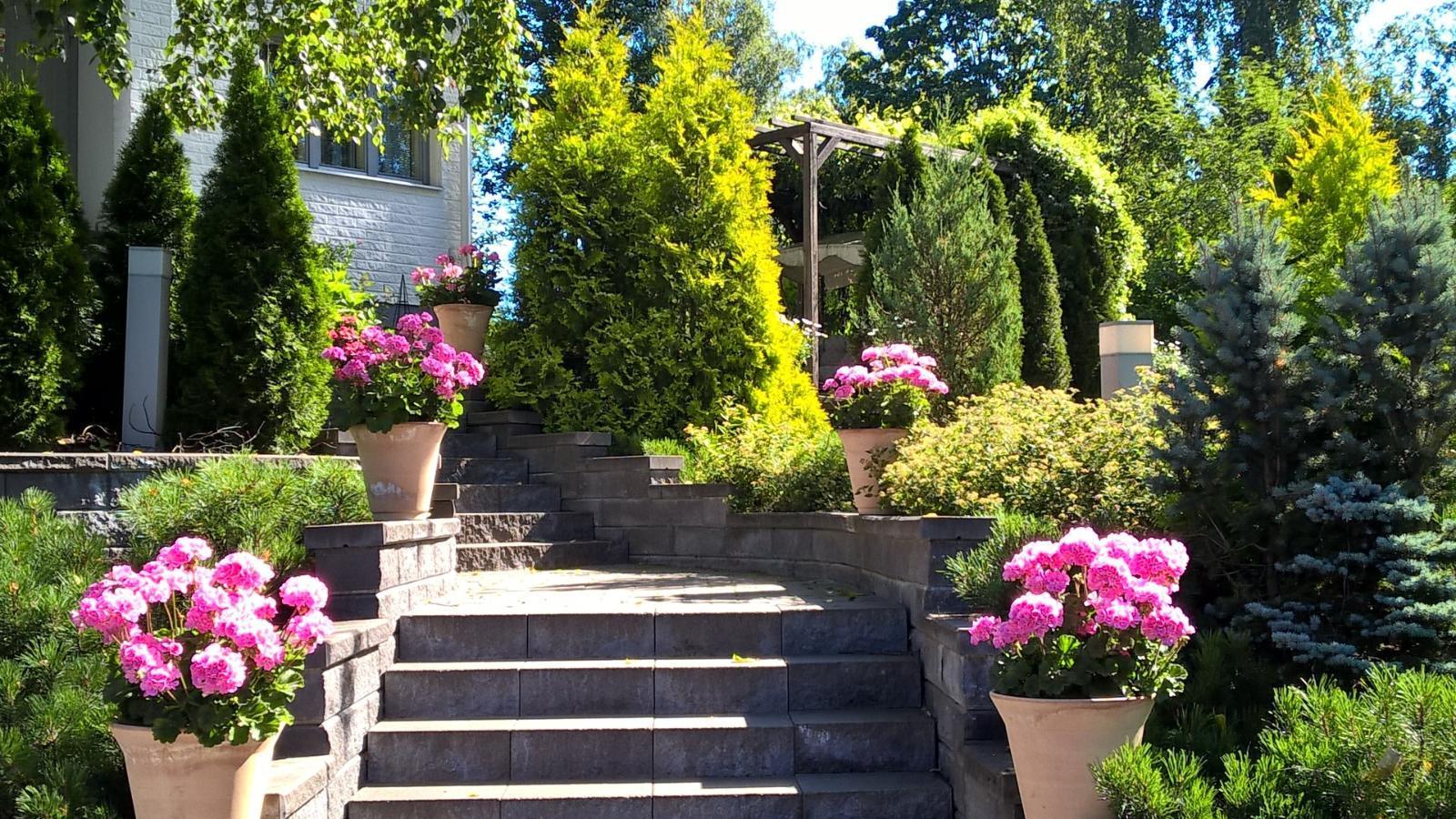 Vehreä piha ja puutarha sisääntulon yhteydessä  Etuovi