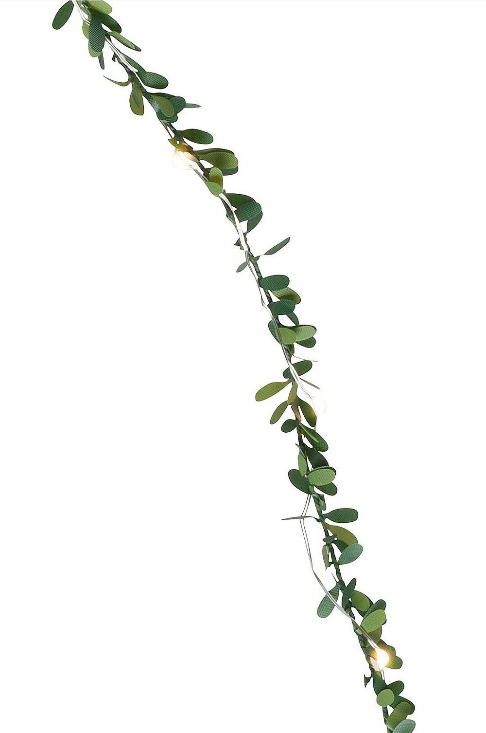 Evergreen-valokäynnös