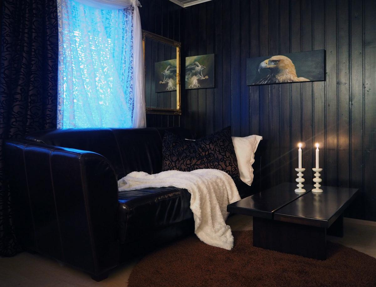 taiteilijan koti, tummasävyinen takkahuone