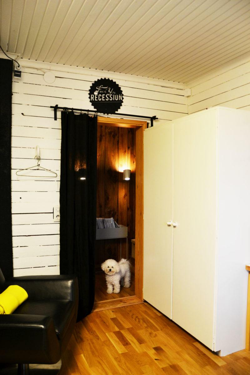 työhuoneen remontti ovi ja Peppi-koira
