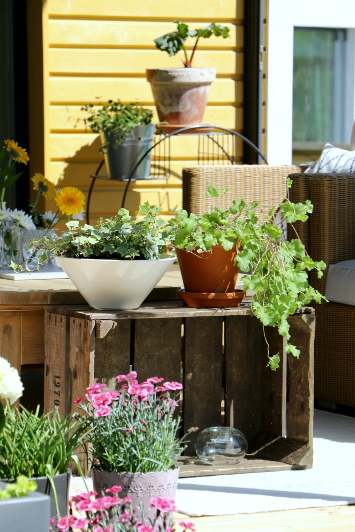 viherkasveilla, kesäkukilla ja tekstiileillä