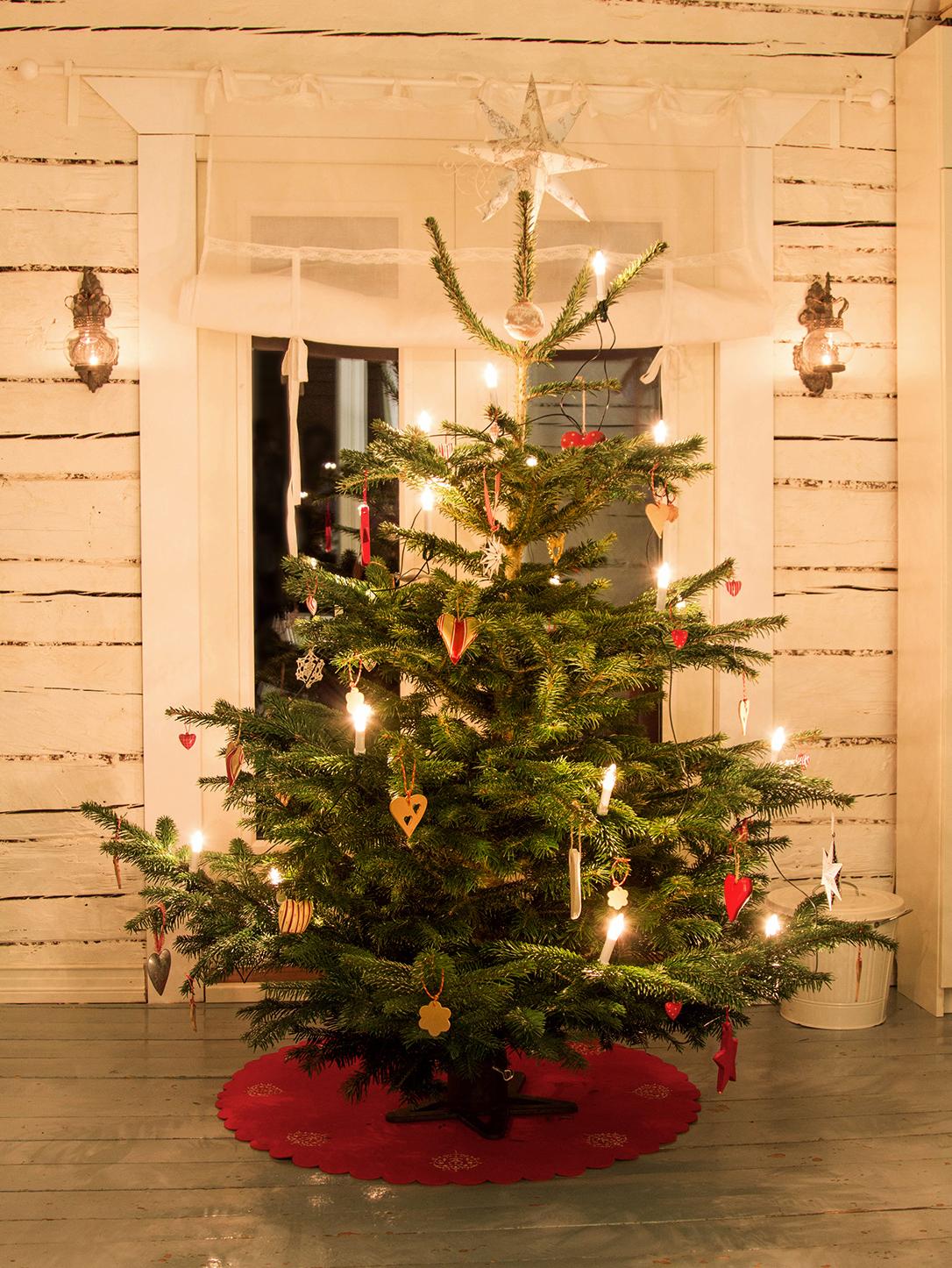 pieni-talo-pirkanmaalla-joulu-kuusi_1