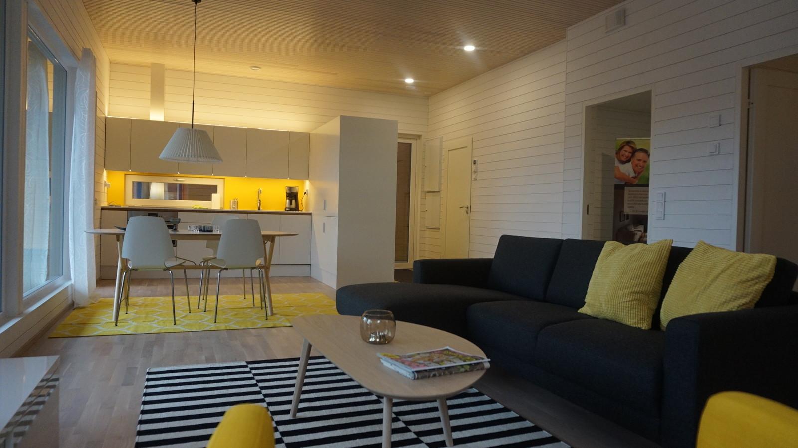 Vapaa-ajan asunnot Salo Mathildedal moderni olohuone