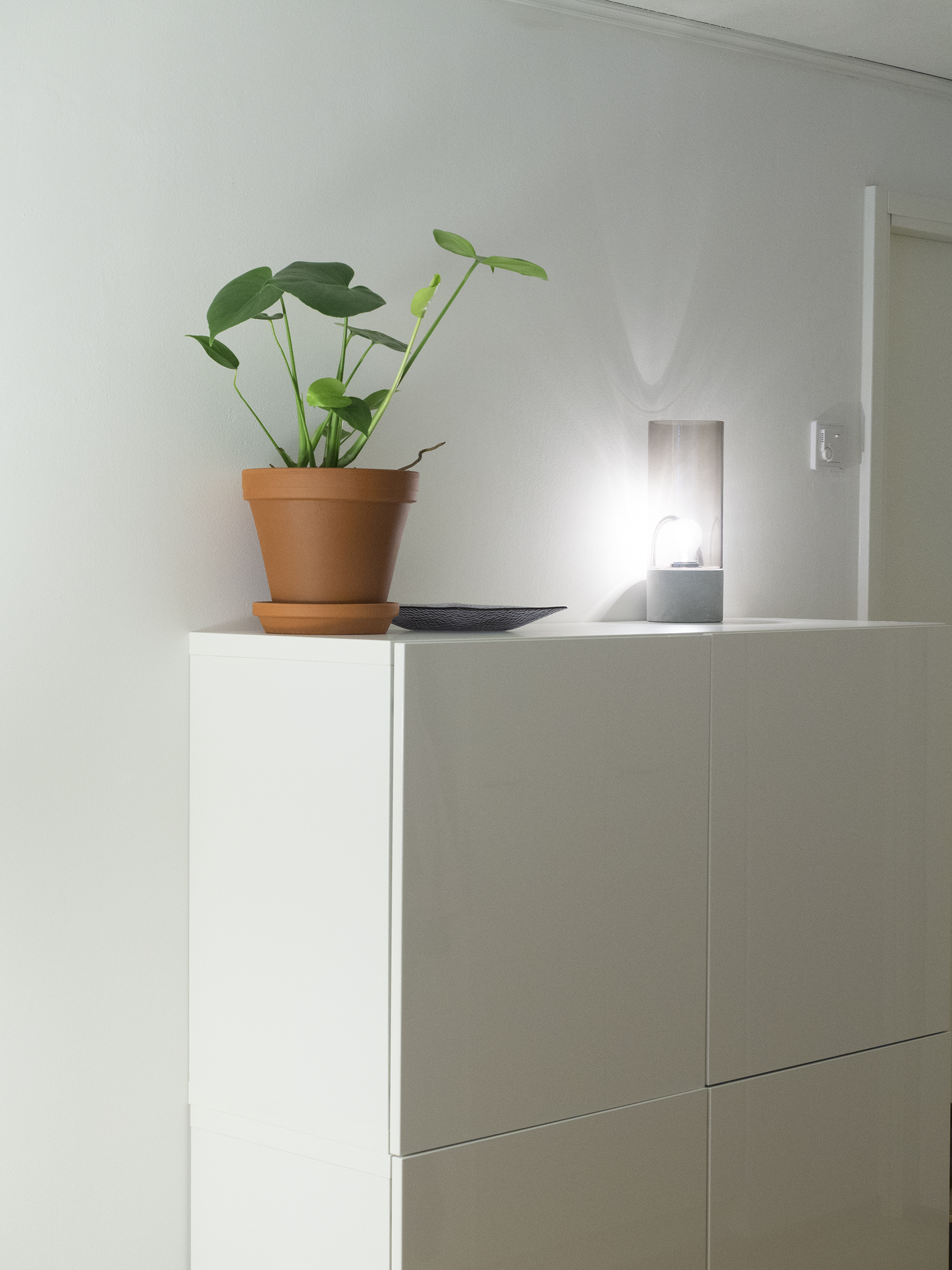 Uusi koti uudella paikkakunnalla - valoisassa asunnossa viihtyvät myös kasvit