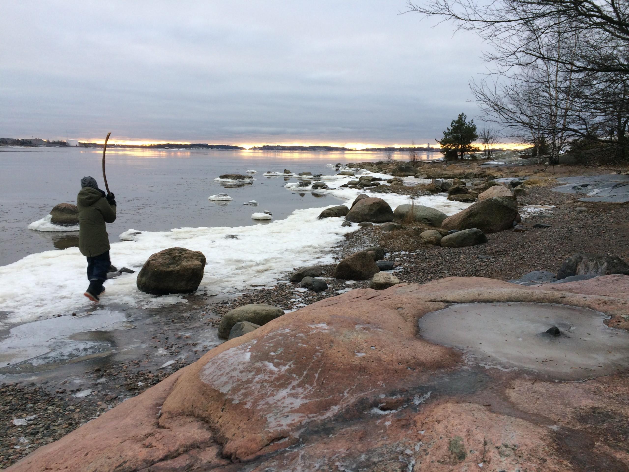 kalasatama luonto