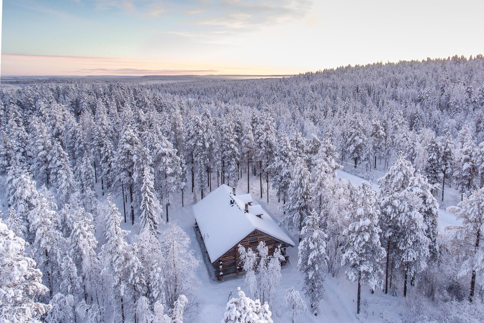 maisemakuva luminen metsä kittilä